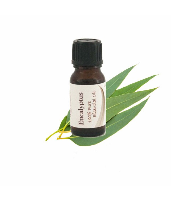 Essential Oil Eucalyptus Oil 12ml