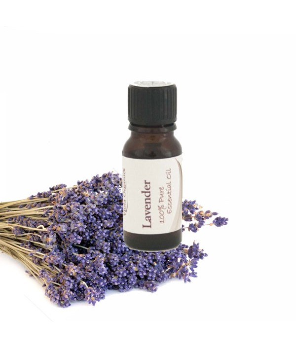 Essential Oil Lavender 12ml